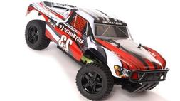 1/10 2.4Ghz Exceed RC Electric Rally Monster RTR Off Road Ra
