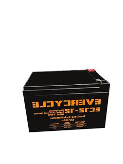 """EverCycle - 12V 12AH - """"F2 KID TRAX"""" RECHARGEABLE REPLACEMEN"""