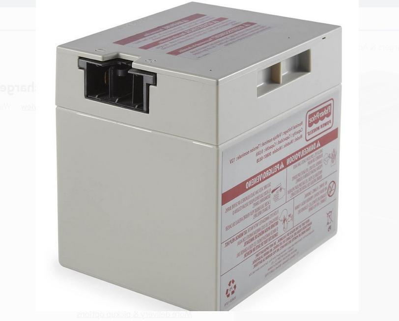 Power Wheels 12-Volt Rechargeable Replacement Battery 9.5 Ah