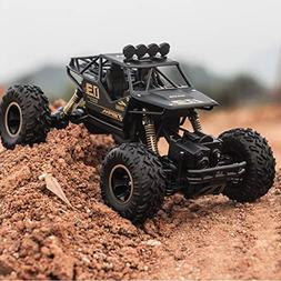 Wireless remote control 4WD rally car 1:16 scale RC car off-